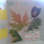 Kreativna radionica – jesen
